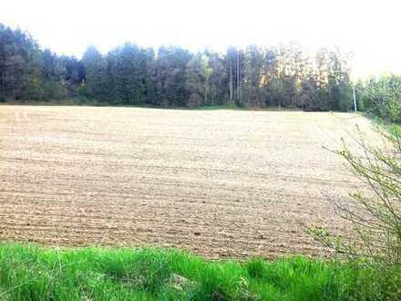 Großes Grundstück in ruhiger Ortsrandlage