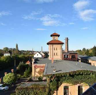 Schöne, geräumige vier Zimmer Wohnung in Zwickau (Kreis), Crimmitschau