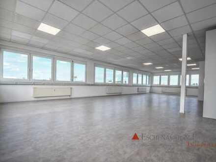Frisch renovierte Büroetage im Gewerbegebiet von Hockenheim