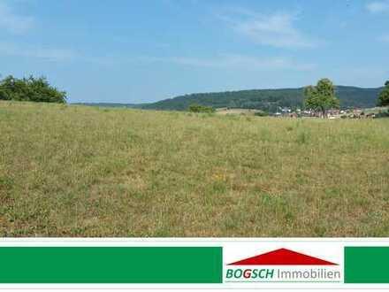 BOGSCH Immobilien - Die Lage entscheidet - Bauland in Feldrandlage zu verkaufen