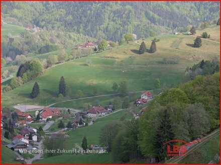 Naturpark Südschwarzwald: 4 Bauplätze in Wieden
