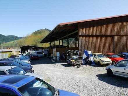 Hausach Ost - Gewerbegrundstück 1200 qm - zu Vermieten -