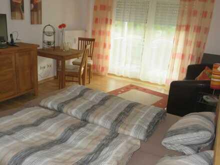 Gepflegte möblierte Einzimmerwohnung mit Balkon und Singleküche in Bad Kreuznach