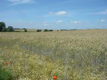 10 ha Landwirtschaftsfläche bei Putlitz!