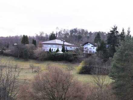 Exklusive Villa in unverbaubarer Waldrandlage