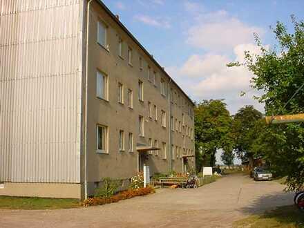 3 Zimmer-Wohnung in Buchenhain