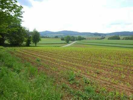 Ackerland in Oberotterbach zu verkaufen
