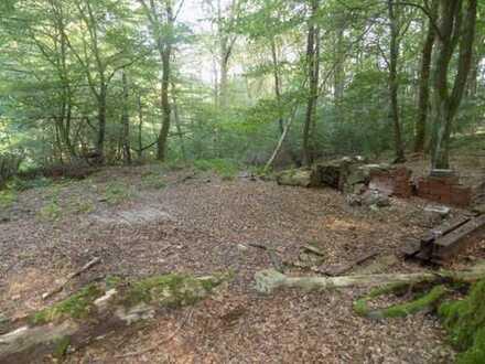 Wald-und Freizeitgrundstück im schönen Wuppertal Cronenberg zu verkaufen.
