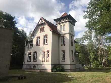 Denkmalgeschütze Fabrikantenvilla auf hochherrschaftlichem Grundstück im Seebad Ueckermünde