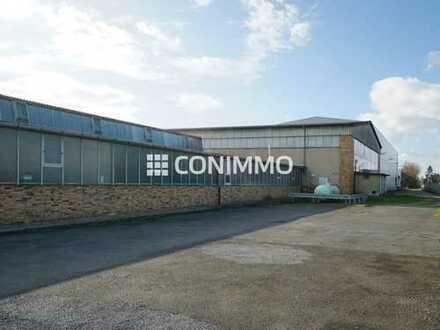 Individuelle Lagerhalle mit großem Freiflächenangebot in Langenhagen
