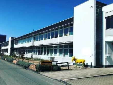Bürofläche 90-100m² (teilbar) *flexible Mietzeit* im EG des ehem. Siemensgelände