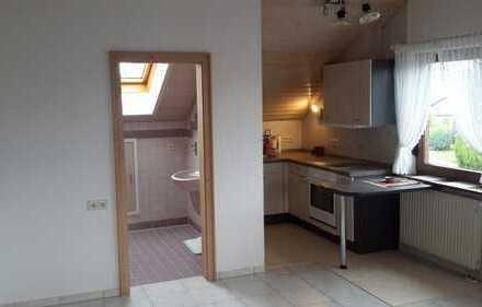 Schönes geräumiges 1-Zimmer- Appartement Horb am Neckar