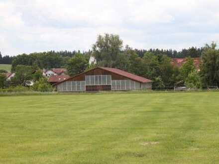 Pferdefreunde aufgepasst! Hochwertige Reithalle mit PV-Anlage + Aussenreitplatz -Gemeinde Hofstetten