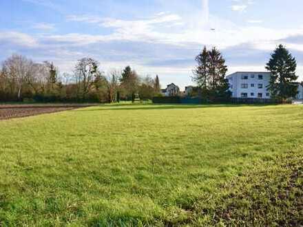 Grünlandfläche am Ortsrand von Rumpenheim