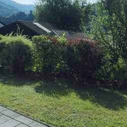 Gepflegte 1-Zimmer-Wohnung mit Terrasse/Garten in Hirschhorn (Neckar)