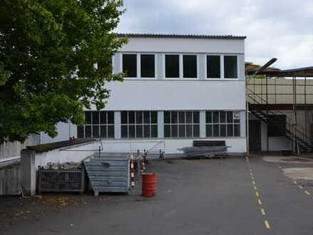 Halle /// Produktion /// Light Industrial - optional mit Büro