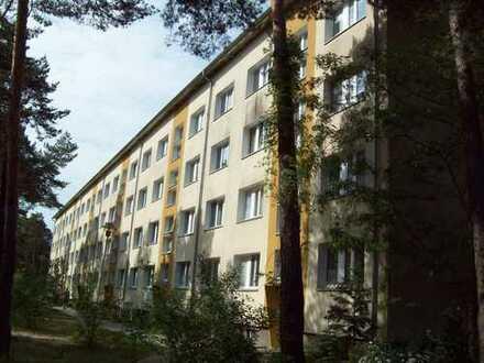 Familienfreundliche 3-Raum-Wohnung mitten im Grünen