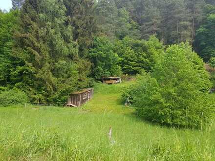 Günstiges Baugrundstück in ruhiger naturtreuer Umgebung