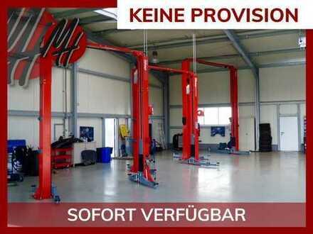 PROVISIONSFREI! Lager-/Werkstattflächen (300 qm) zu vermieten