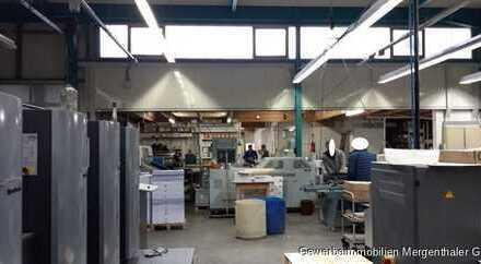 Produktion, Lager, Werkstatt mit Büro