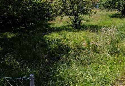 Herrliches Grundstück, zentral aber ruhig - Ideal für Ihren Hausbau mit Bien-Zenker