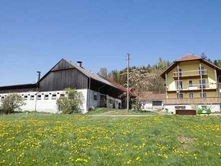 Landwirtschaftliche Hofstelle mit 9 ha und arrondierten Wiesen