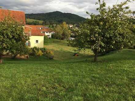 Schönes Grundstück für Ihr Einfamilienhaus - Toller Blick ins Grüne