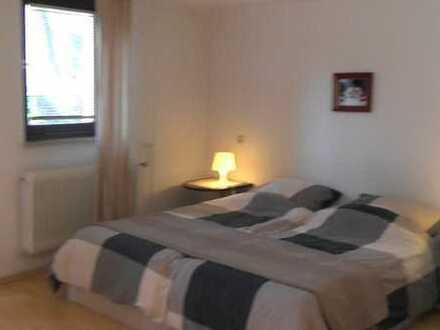 möblierte 1-Zimmerwohnung mit Wlan, Tv, Küchenzeile, Dusche/Wc, Terrasse, ab 1 Monat mietbar