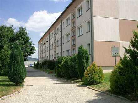 3-Zi.-Wohnung mit Südbalkon am Ortsrand