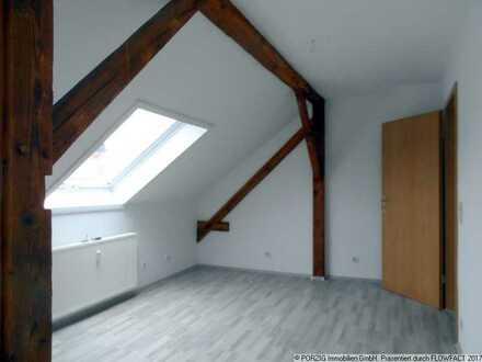 +++ 1-Raum-Wohnung in Schkopau OT Döllnitz +++