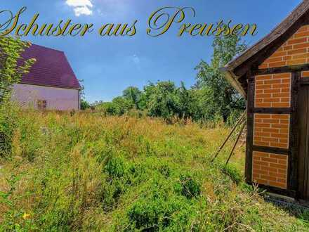 Schuster aus Preussen - Malerisches Oderbruch - ca. 730 m² großes Baugrundstück in sehr ruhiger, ...