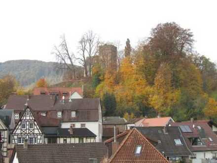 Sanierungsbedürftiges Häuschen im Zentrum von Neckarsteinach