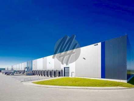 PROVISIONSFREI ✓ LOGISTIK-NEUBAU ✓ 30.000 m² / teilbar ✓ viele Rampen ✓ 12 m Höhe ✓