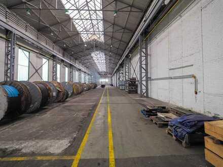 INDUSTRIEKOMPLEX - Lagerhalle/Produktionshalle mit Büroflächen im Biosphären Reservat Bliesgau