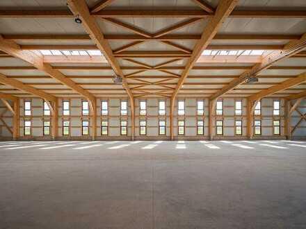 Neubau: Lichtdurchflutete Hallen- & Produktionsflächen - Holzbau - großzügige Stellplatzsituation
