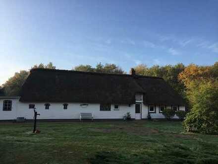 Historisches Reetdachhaus in Alleinlage nahe der Nordseeküste
