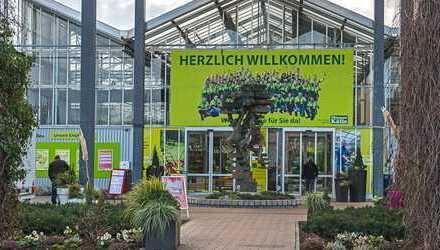 Fläche im Gartencenter Pflanzen-Kölle Heilbronn