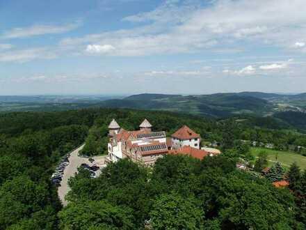 Neuwertiges 3-Zimmer-Schloss/Herrenhaus mit EBK in Föckelberg, Foeckelberg