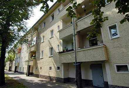 Familienwohnung - moderner Grundriss und Ausstattung - grüner Hof