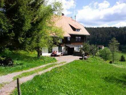 Schöne zwei Zimmer Wohnung in Schluchsee Fischbach