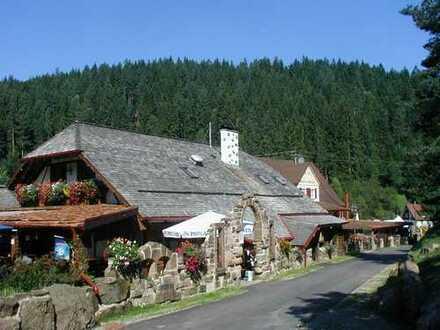 Anwesen mit 2 Häuser, 4335 qm Bauplatz und 6877 qm Grundstück
