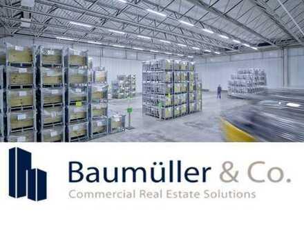 Nähe A1: ca. 50.000 m² NEUBAU-Logistikfläche - Rampe/ebenerdig