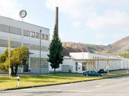 PROVISIONSFREI-Gewerbepark B420: flex. Lager-u.Produktionshallen; Freifläche; Büros; EXISTENZGRÜNDER