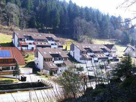 Sonnige 2 Zimmer-Wohnung mit Südterrasse und Möbelierung im Kurort Bad Rippoldsau