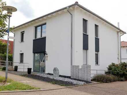 Möblierter Wohntraum in Neckarsulm-Amorbach mit offenem Kamin und Pool