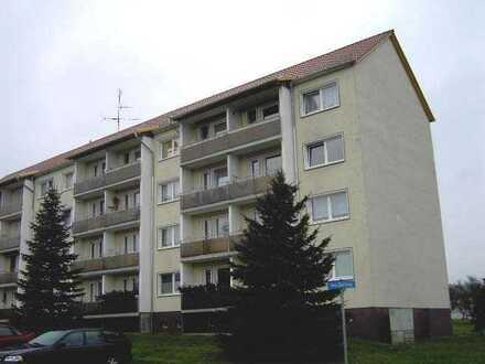 Helle Zweizimmerwohnung für 1 bis 2 Personen in ruhiger Waldrandlage