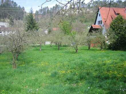Bauplatz 896m² für Einfamilien-/ Doppelhaus, voll erschlossen in Sulz-Fischingen