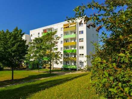 Albert-Schweitzer-Straße 39
