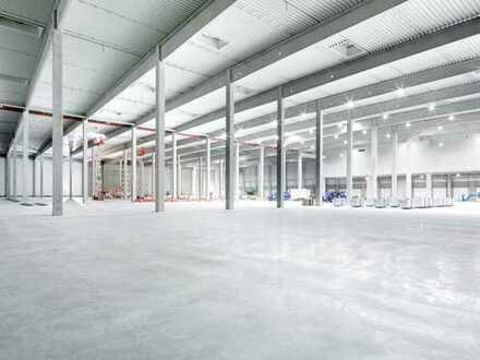 """""""BAUMÜLLER & CO."""" - ca. 20.000 m² NEUBAU! Hallenfläche - ebenerdige Hallentore + Rampe"""