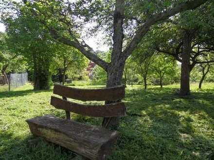 Wertanlage - 1.630 qm BGr. für Mehrgenerationenhaus - mit Blick auf die Pillnitzer Weinberge
